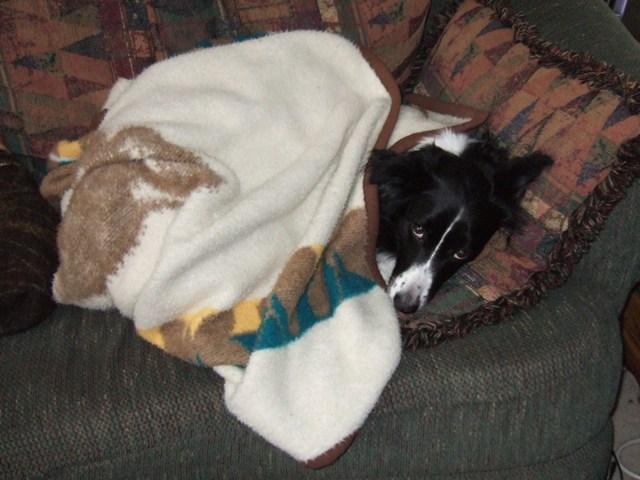 Ahhh...Fuzzy Blanket